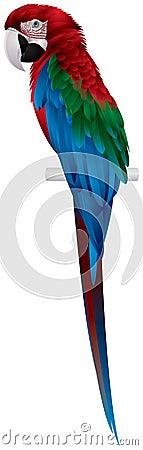 Papegaai, rood-en-Groene Ara
