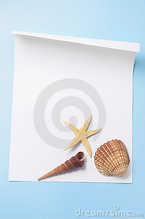 paper with cockleshells