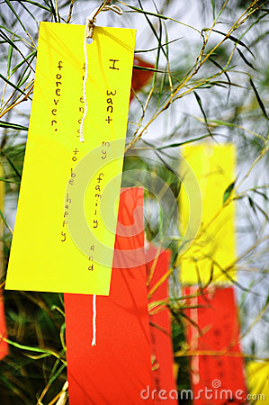Paper labels on the bamboo