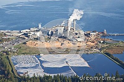 Paper Pulp Mill