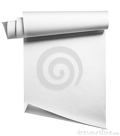 Paper roll, isolated