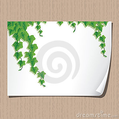 Paper sheet with ivy borders.