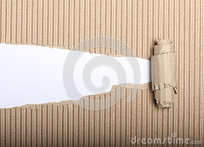Paper and torn cardboard