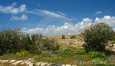 Paphos lighthouse in cyprus island