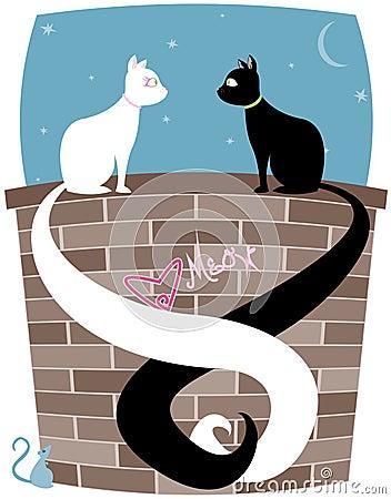 Par del gatito