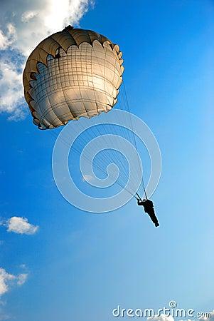 Free Parachute Jump Stock Photography - 9413762