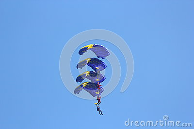 Parachutists in formation Editorial Photo