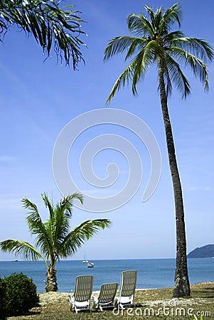 Free Paradise Royalty Free Stock Image - 4352686