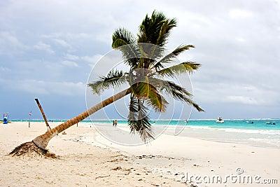 Paradise beach in mexico