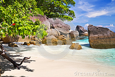 Paradise beach with turquoise water
