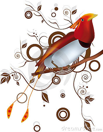 Paradise bird and ornamen