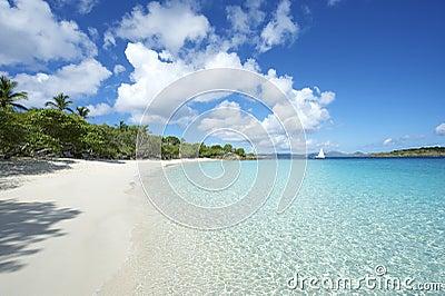 Paradise Caribbean Beach Virgin Islands Horizontal