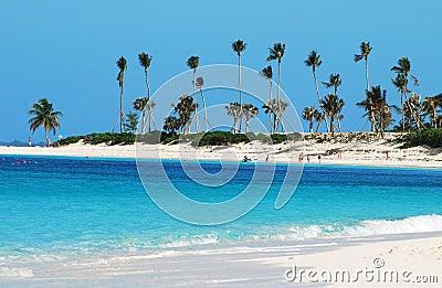 Paradise Island Coastline