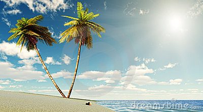 Paradise with sun