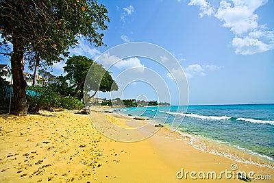 Paradisiac White sand beach