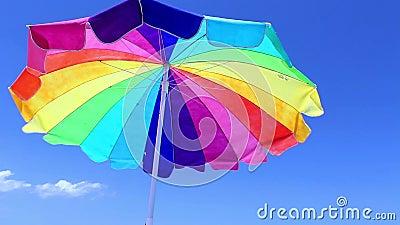 Parasol de playa con el pájaro almacen de metraje de vídeo
