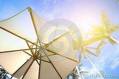 parasol sous des arbres de noix de coco contre le ciel bleu un jour tr s chaud photo stock. Black Bedroom Furniture Sets. Home Design Ideas