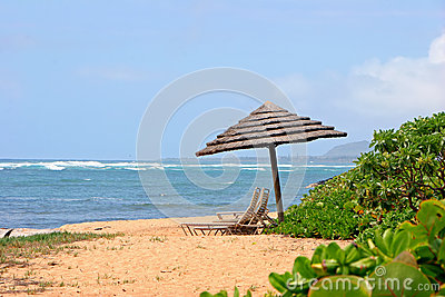 Parasol on tropical beach