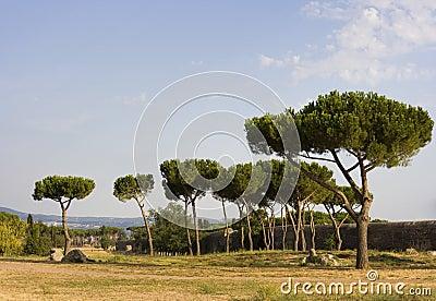 Parco degli Acquedotti - Rome, Italy