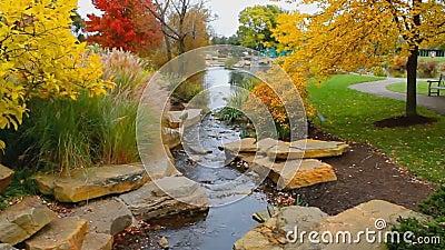 Parco di autunno archivi video