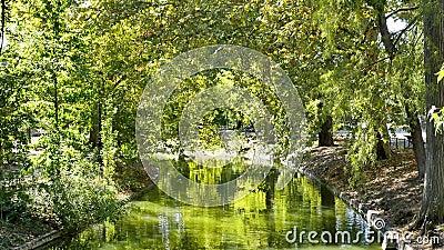 Parco nella città del Bordeaux video d archivio