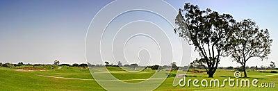 Parcours ouvert de golf
