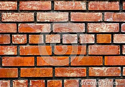 Paredes de tijolo