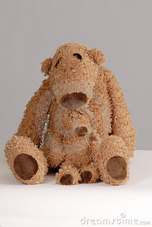 Parent and child teddy bear