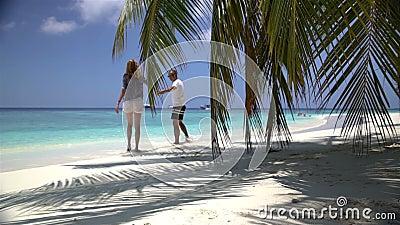 Pares atractivos jovenes que disfrutan de un día de fiesta en la costa tropical almacen de metraje de vídeo