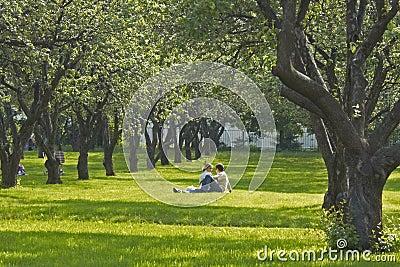 Pares jovenes en parque