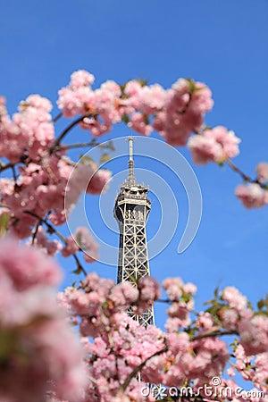 Parisian detail