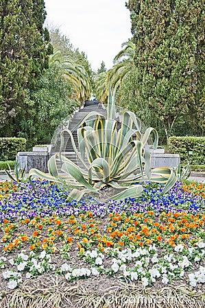The park arboretum