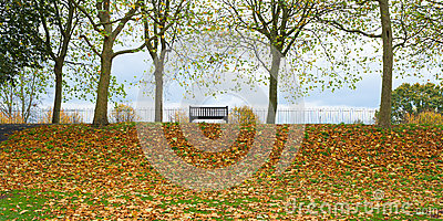 Park bench autumn UK