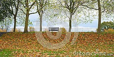 Colchester castle park uk autumn