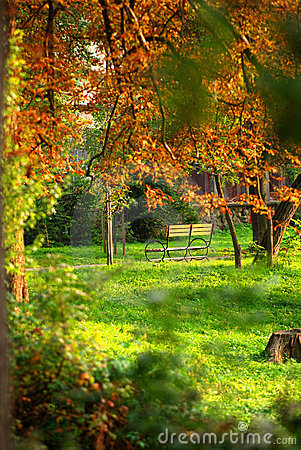 Free Park Bench In Autumn Stock Photography - 3950612