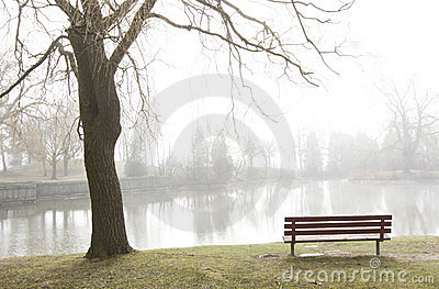Park bench overlooks misty lake