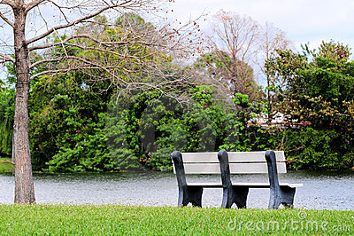 Park Bench By the Water