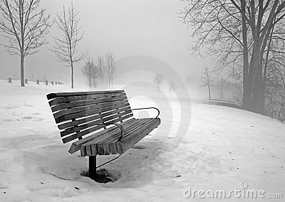 Park Bench in Winter Fog