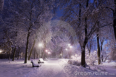 Park covered with snow at night.