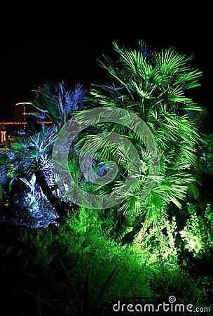 Park in de stad van Sotchi,