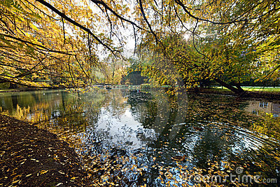 Park för leaves för grändfall fallande