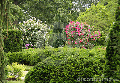 Park and garden view