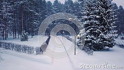 Park mit den Wegen belichtet von den Laternen und von gehenden Leuten im Winter clip Draufsicht von den Leuten, die herein in Par stock video footage