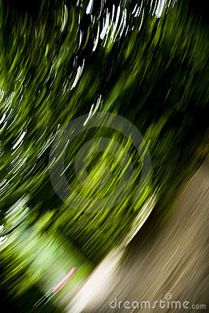 Free Park Motion Stock Photo - 7780740