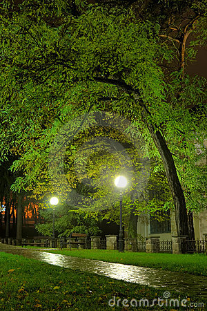 Park in the night