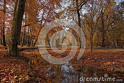 Park in Oliwa