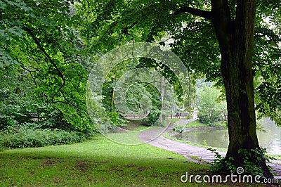 Park on rainy day