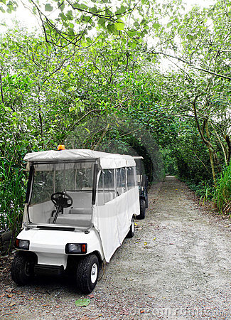 Park ranger vehicle in nature reserve