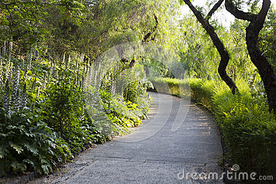Park s pathway
