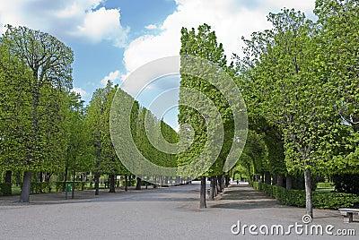 Park Schonbrunn